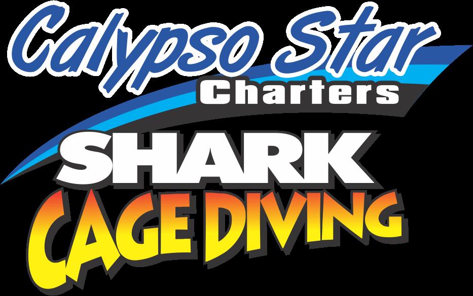 Calypso Star Shark Diving