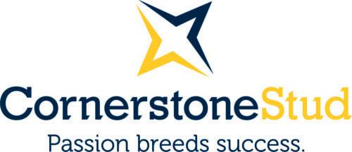 Cornerstone Stud